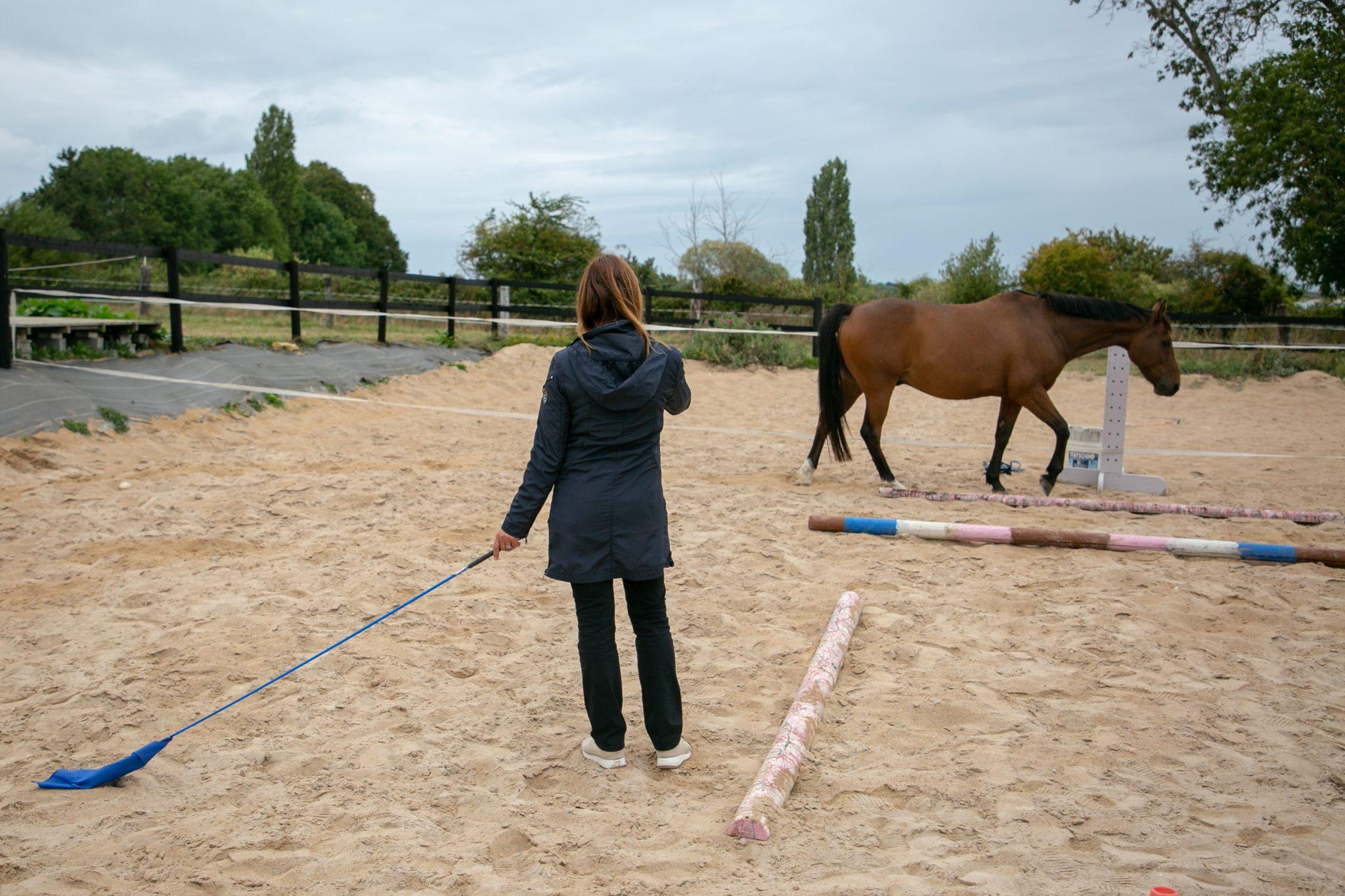 Savoir garder le cheval à distance tout en restant connecté à lui, l'une des subtilités d'une séance d'équicoaching.