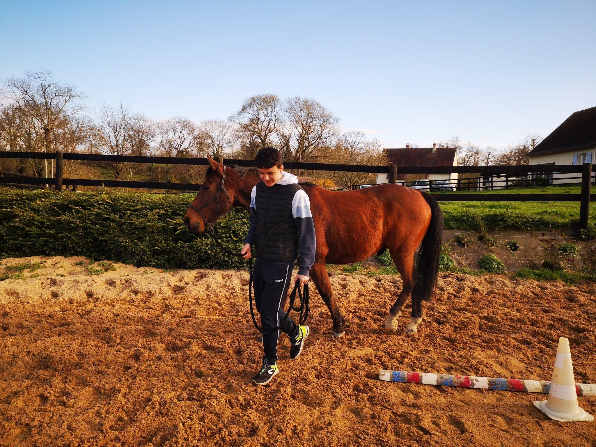 Le cheval agit comme un véritable miroir ; il se sert de son attitude corporelle pour exprimer son état d'esprit et manifeste immédiatement ses besoins et ses envies.